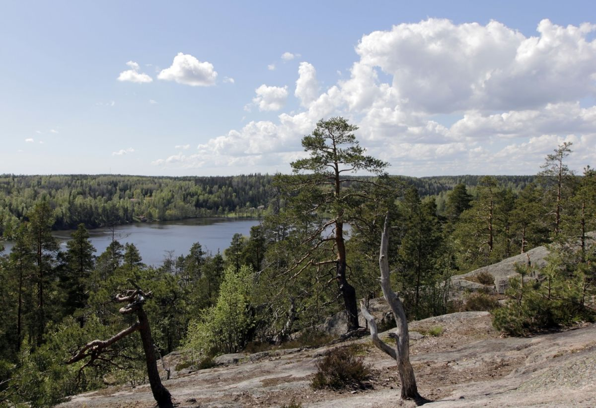 Nuuksio national park is a fabulous combination of forests, lakes, rocks and ravines.