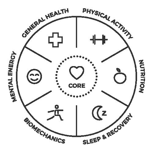 Hintsan kokonaisvaltaisen hyvinvoinnin malli muistuttaa hyvinvoinnin monimuotoisuudesta.